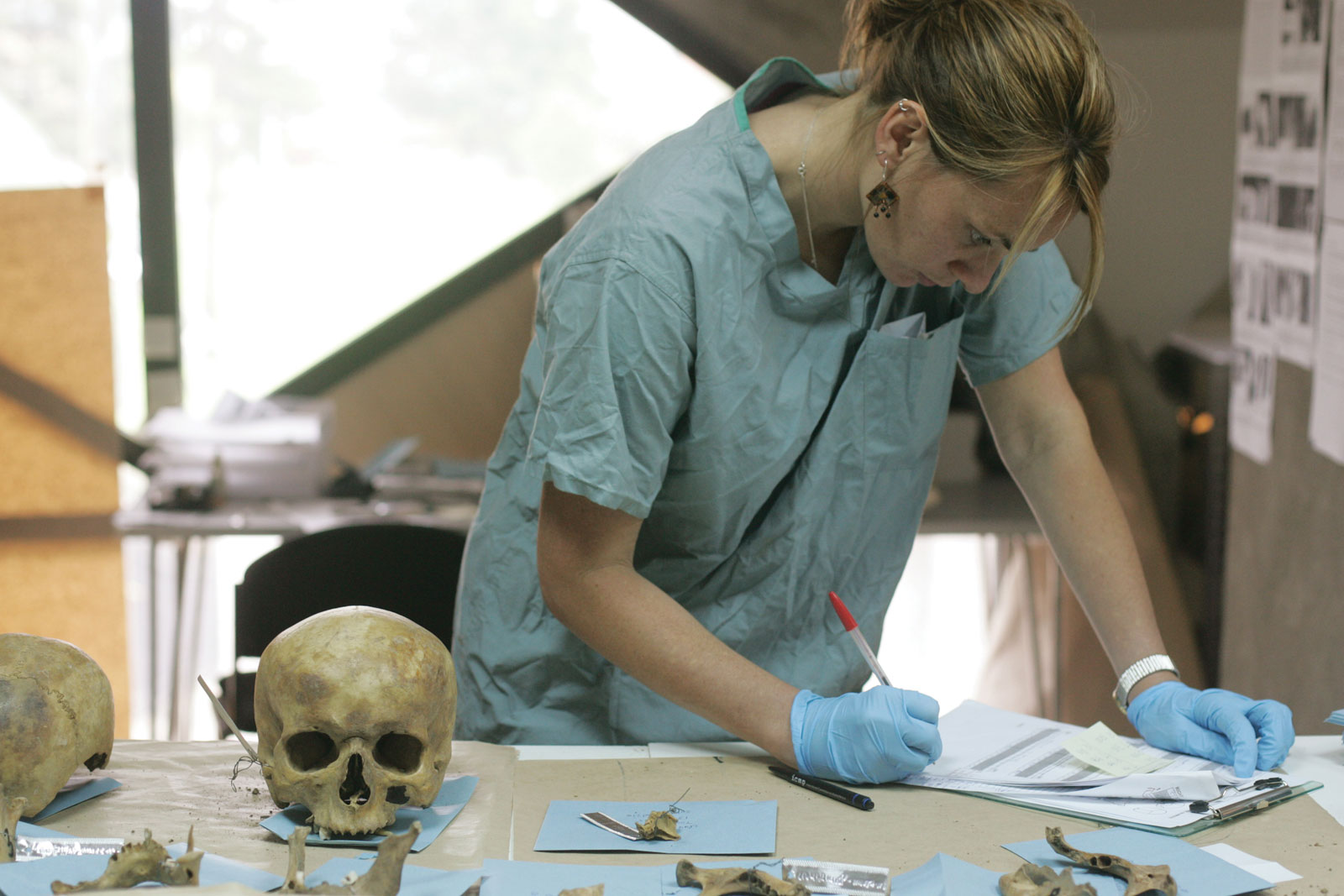 Archaeology easy careers to study in college